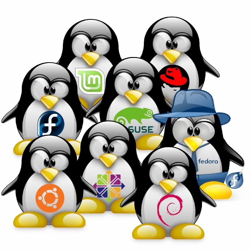 Установка Ntopng на Debian